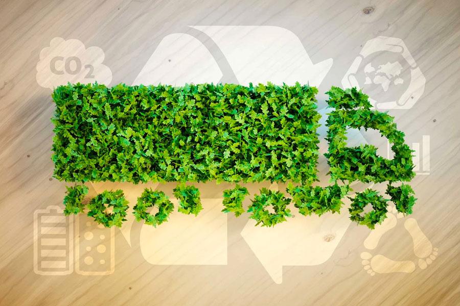 logistica-ecologica-verde.jpg